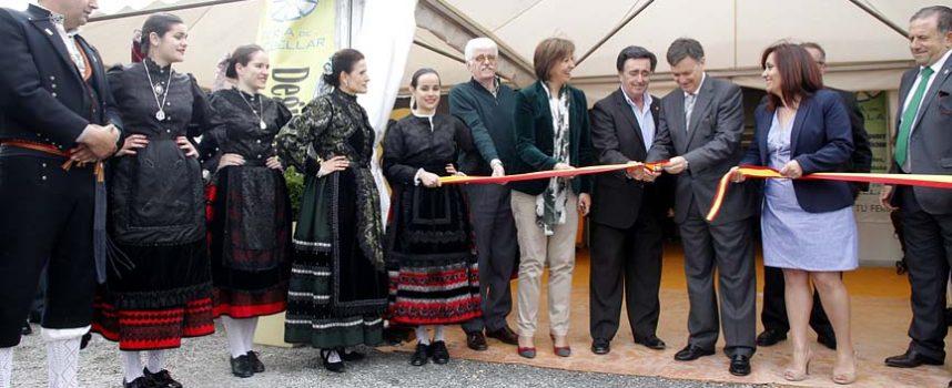 La Feria de Cuéllar duplica su cifra de expositores y espacios en ocho años