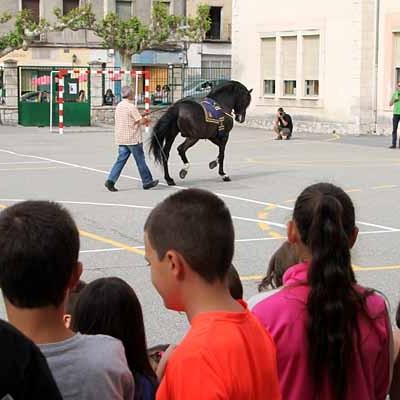 El colectivo A Caballo organiza una nueva exhibición de doma en el CEIP San Gil