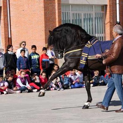 A Caballo realizó una exhibición ecuestre en el colegio de San Gil