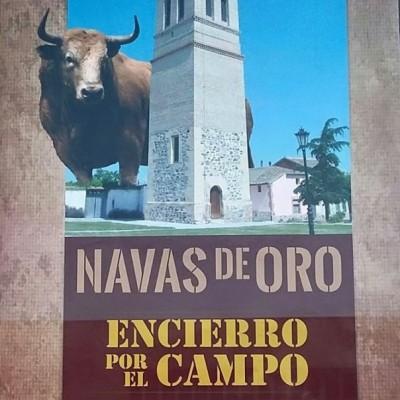 El encierro campestre es el principal atractivo de las fiestas de Santiago en Navas de Oro