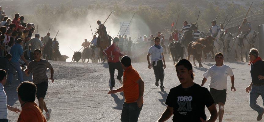 Entrada de las reses de Manuel Blázquez en el quinto encierro de 2009.