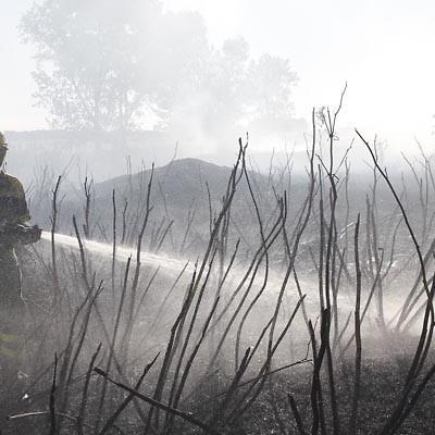 Continúa activo un incendio forestal en Sanchonuño