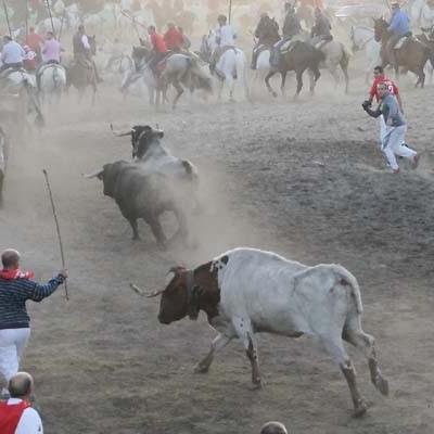Cuatro toros completan un encierro rápido y desagrupado