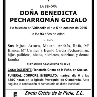 Benedicta Pecharromán Gozalo