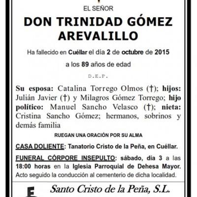 Trinidad Gómez Arevalillo