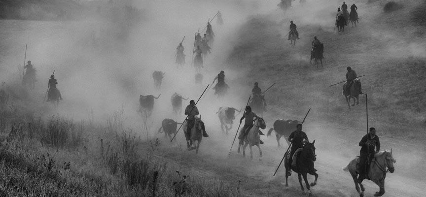 Fotografía ganadora del premio del público del XIX Concurso Fiestas de Cuéllar.  Autor: Juan Carlos Rebollo 