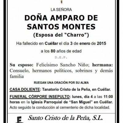 Amparo Santos Montes