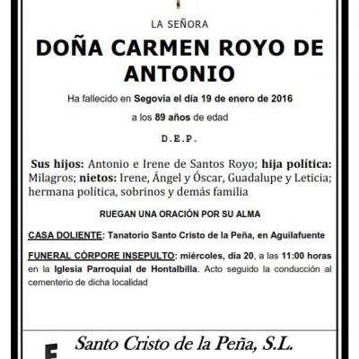Carmen Royo de Antonio