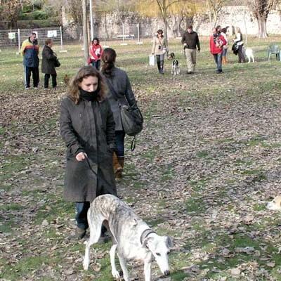 """Medio Ambiente pondrá en marcha """"áreas caninas"""" en distintos puntos del municipio"""