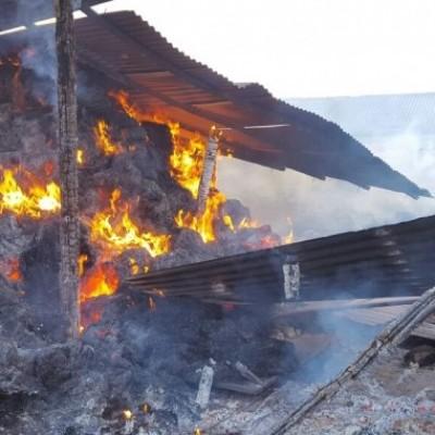 """La Plataforma """"No más mierda"""" condena la posible intencionalidad de un incendio sucedido esta mañana"""