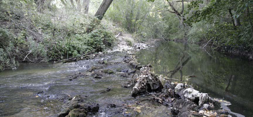 IU Cuéllar presentó siete alegaciones a la modificación de la concesión de aguas de los regantes de El Carracillo