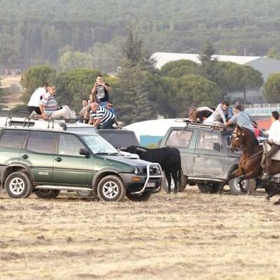 La Junta tramita cinco expedientes por la invasión de vehículos en el recorrido de los toros en los encierros de Cuéllar de 2015