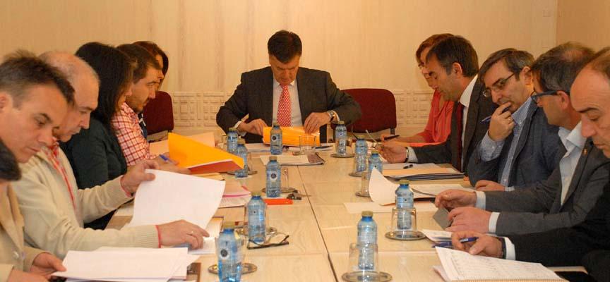 Consejo rector de Prodestur.
