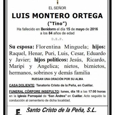 Luis Montero Ortega