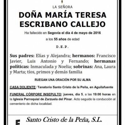 María Teresa Escribano Callejo