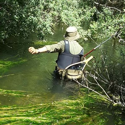 Pescadores sorprendidos
