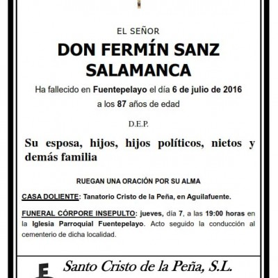 Fermín Sanz Salamanca