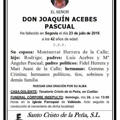 Joaquín Acebes Pascual