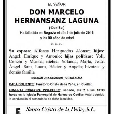 Marcelo Hernansanz Laguna