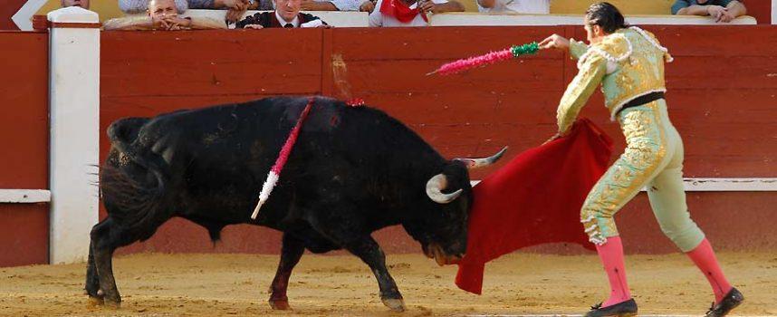 El Encierro entregará el Trofeo al Toro Bravo de la Feria Taurina de Cuéllar de 2016
