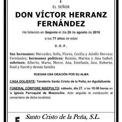 Víctor Herranz Fernández
