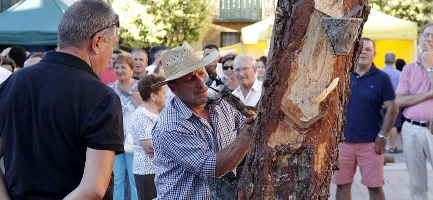 Cuéllar acogerá el sábado la II Fiesta Nacional de la Resina