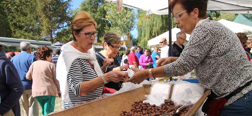 Las avellanas es uno de los productos más tradicionales de la Romería.