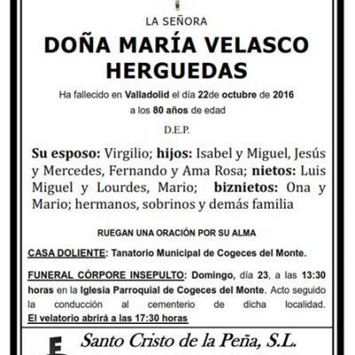 María Velasco Herguedas