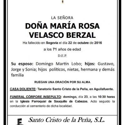 María Rosa Velasco Berzal