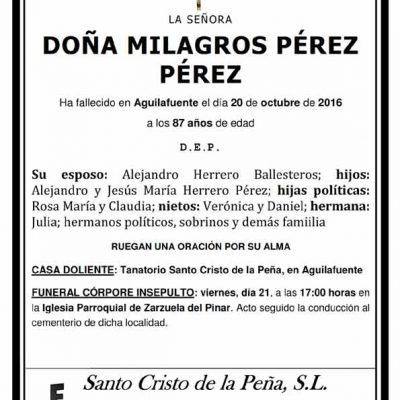 Milagros Pérez Pérez