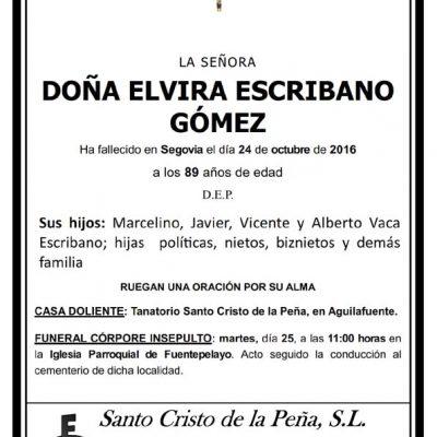 Elvira Escribano Gómez
