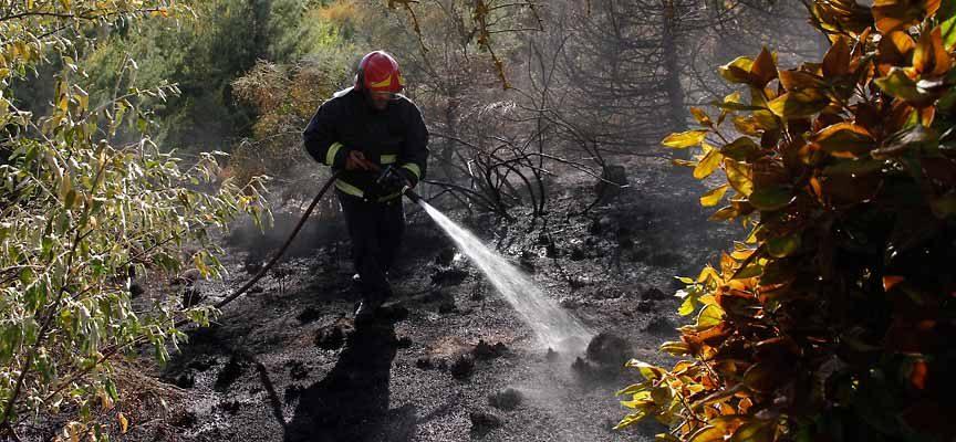 La Junta declara peligro medio de incendios forestales en toda la Comunidad hasta el jueves 6 de junio