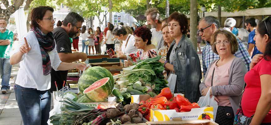 Los Paseos de San Francisco acogerán el domingo el VII Mercado Ecológico