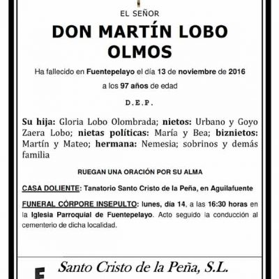 Martín Lobo Olmos