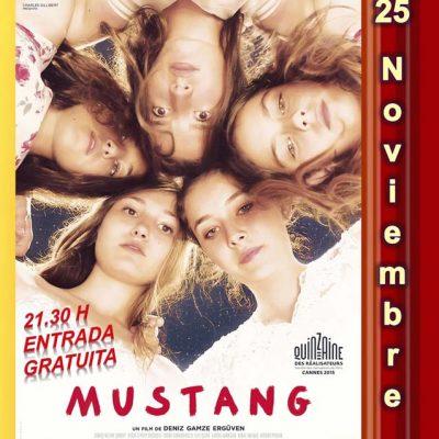 Cine social con la proyección de la película `Mustang´