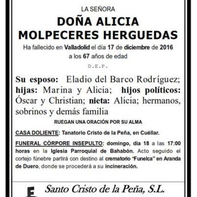 Alicia Molpeceres Herguedas