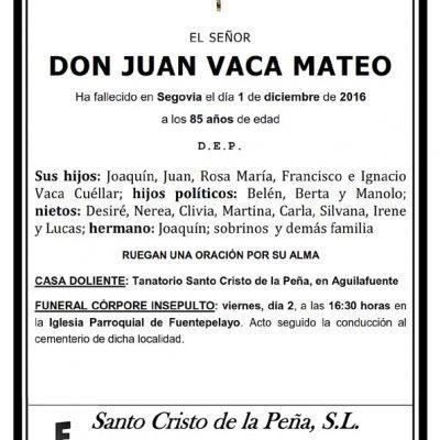 Juan Vaca Mateo