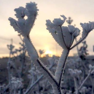 La temperatura ha caído hasta los -12,6 grados esta mañana
