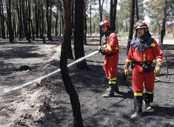 Alerta de riesgo de incendios forestales del 22 al 24 de julio por altas temperaturas