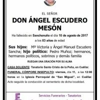 Ángel Escudero Mesón
