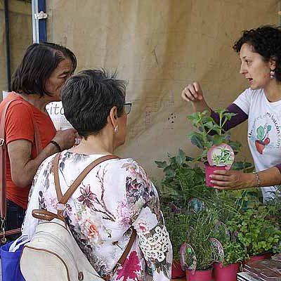 Medio Ambiente acercó a la villa los productos ecológicos con un mercado