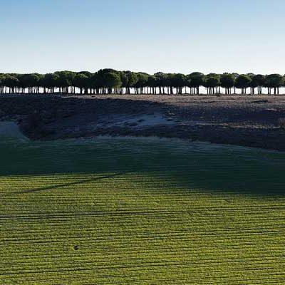 Eduardo Marcos gana una medalla de bronce en los Pano Awards con su fotografía `The green line´