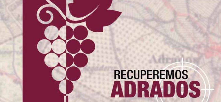 Crowdfunding para recuperar el pasado vitivinícola de Adrados