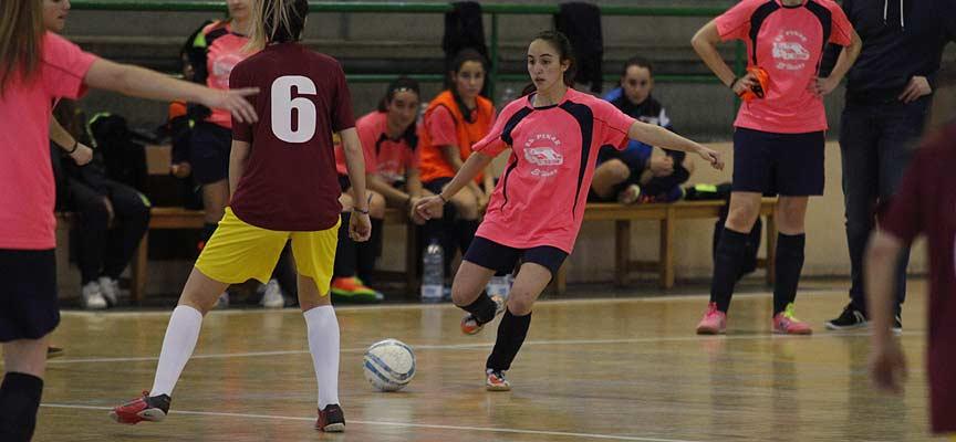 Imagen de un partido entre el FS Autoescuela EP&EH y el Viana Estadio.