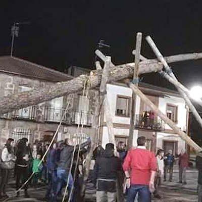 El mayo ya luce en la plaza de Zarzuela del Pinar
