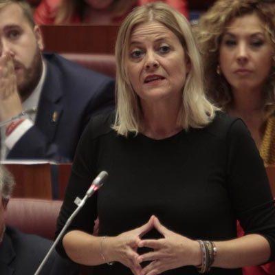 El PSOE eleva a las Cortes la petición de un maestro más para el colegio de Gomezserracín