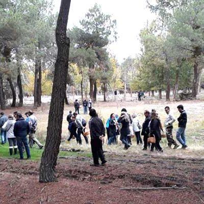 Las IV Jornadas Micológicas de Fuenterrebollo invitan a pasear por sus pinares y lagunas