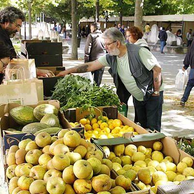 Una decena de productores participarán el domingo en el IX Mercado Ecológico