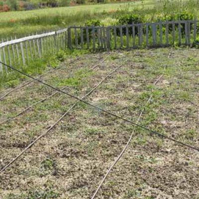 La agricultura ecológica y economía solidaria centrarán las jornadas de Escuelas Campesinas en Olombrada