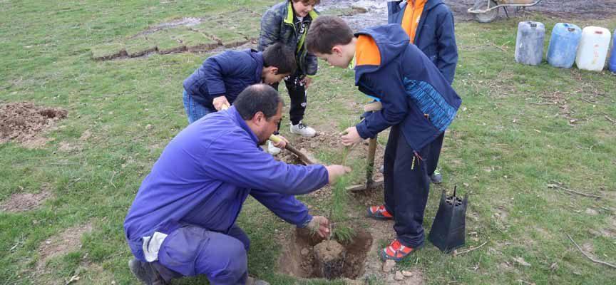 La Diputación repartirá entre los municipios de menos de 5.000 habitantes 1.764 árboles